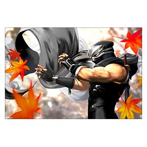 Ninja Gaiden. Размер: 60 х 40 см